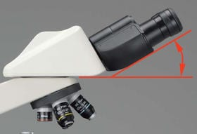 30 degree eyepiece tube